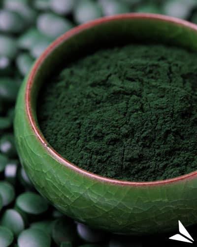L'algue chlorella, la solution à vos moments de faiblesse