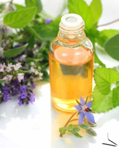 Les atouts beauté de l'huile de bourrache. <br>Vous connaissez ?